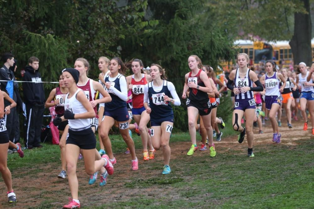 ILXCTF - Mike Newman - News - Illinois High School Cross Country ... 304f7d25bb99